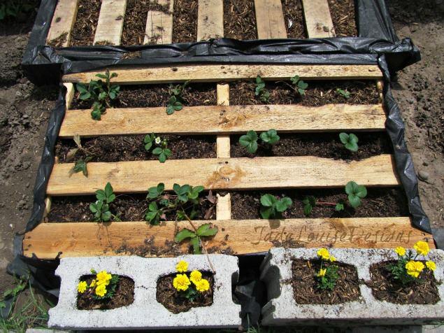 Photos De Jardiniere En Palette